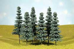3-4 Blue Spruce Trees Pack of Six (N)