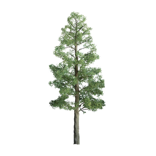 Z Scale Pine Trees - Professional Series 6 Pack (1-1/2)